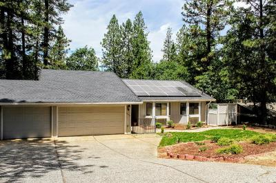 Grass Valley Single Family Home For Sale: 15038 Pammy Way