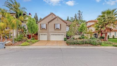 Folsom Single Family Home For Sale: 320 Canyon Falls Drive