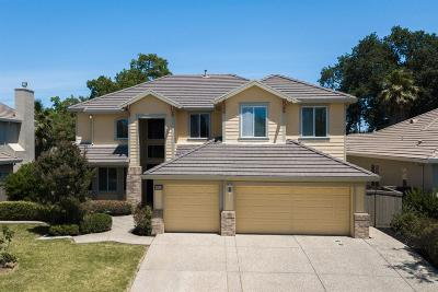 Elk Grove Single Family Home For Sale: 6801 Rawley Way