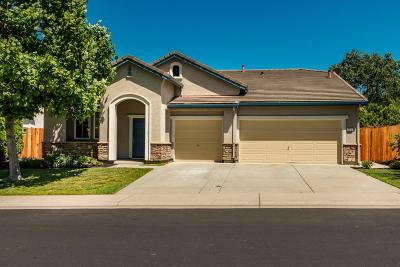 Rocklin Single Family Home For Sale: 4019 Aitken Dairy Road