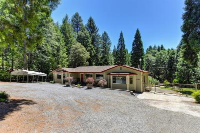 Foresthill Single Family Home For Sale: 22960 Gold Pan Lane