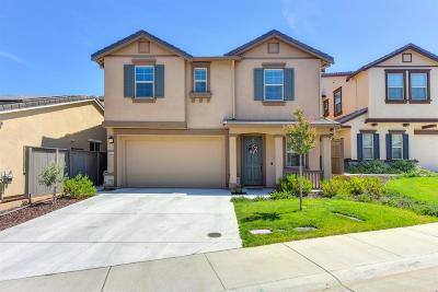 El Dorado Hills Single Family Home For Sale: 8037 Avanti Drive