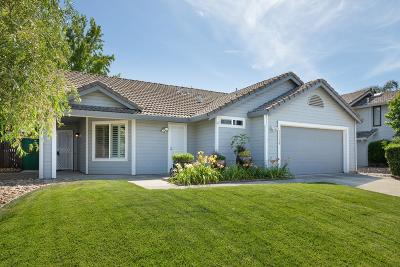 Rocklin Single Family Home For Sale: 3534 Willard Way