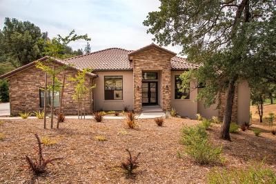 Auburn Single Family Home For Sale: 13056 Austin Forest Drive