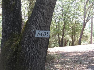 Foresthill Residential Lots & Land For Sale: 6405 Green Leaf