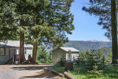 Placer County Single Family Home For Sale: 1033 Lovers Leap Road