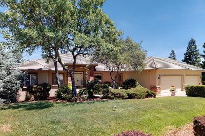 El Dorado Hills Single Family Home For Sale: 4189 Hensley Circle