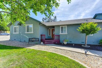 El Dorado County Single Family Home For Sale: 2509 Dudley Drive