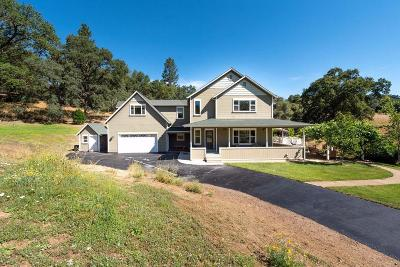 Sutter Creek Single Family Home For Sale: 12860 Locust