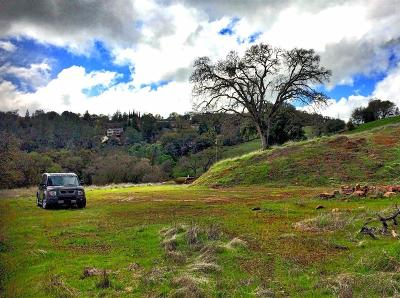 Sutter Creek Residential Lots & Land For Sale: Allen Ranch Road
