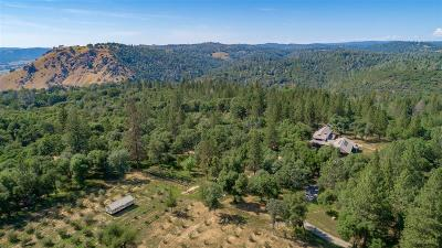 Placerville Single Family Home For Sale: 4000 Twin Ridges Road