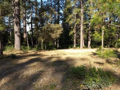 Nevada County Residential Lots & Land For Sale: 651 Chief Kelly Drive