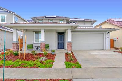 Yolo County Single Family Home For Sale: 1933 Shellhammer Drive