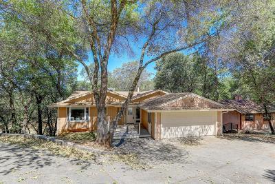 Penn Valley Single Family Home For Sale: 20116 Lakeside Lane