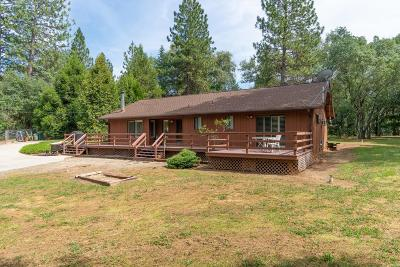 El Dorado County Single Family Home For Sale: 6241 Pikes Peak Circle