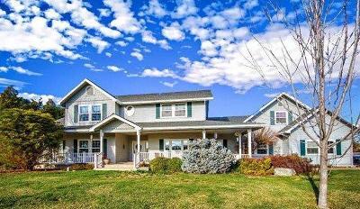 Sonora Single Family Home For Sale: 10000 Vine Springs