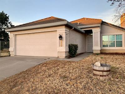 Elk Grove Single Family Home For Sale: 8898 Apricot Tree Ct