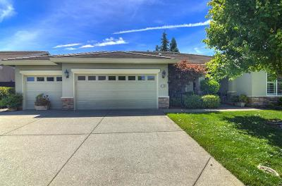 Rocklin Single Family Home For Sale: 4105 Tahoe Vista Drive