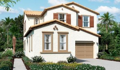 Mountain House Single Family Home For Sale: 210 East Bella Serata Avenue