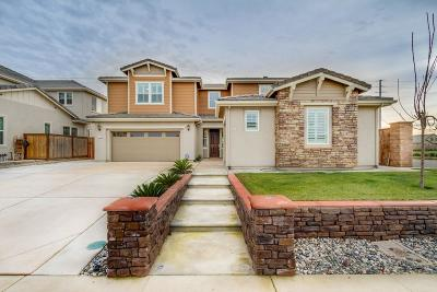 Elk Grove Single Family Home For Sale: 8500 Bolcetto Circle
