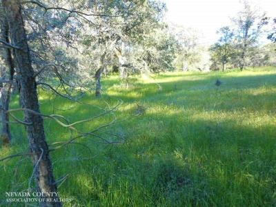 Nevada County Residential Lots & Land For Sale: 14725 Beyers Lane
