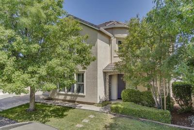 Sacramento Single Family Home For Sale: 140 Allaire Circle