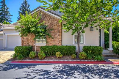 El Dorado Hills Single Family Home For Sale: 3816 Park Drive