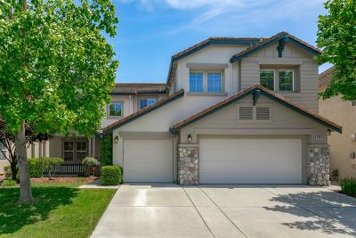 Elk Grove Single Family Home For Sale: 9721 Ruddy Duck Way