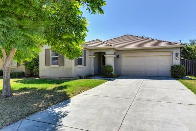 Manteca Single Family Home For Sale: 1641 Bermuda Lane