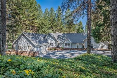 Nevada City Single Family Home For Sale: 11616 Forest View Drive