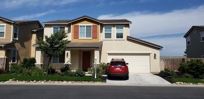 Modesto Single Family Home For Sale: 1800 Thomas Court