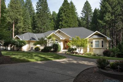 Nevada City Single Family Home For Sale: 14445 Idaho Maryland Road
