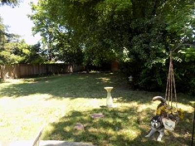 Sacramento Single Family Home For Sale: 3630 East Country Club Lane