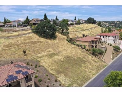 Rocklin Residential Lots & Land For Sale: 2590 Clubhouse Drive