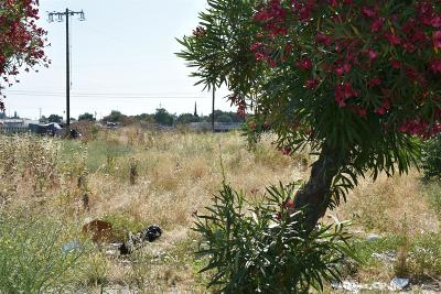 Stockton Residential Lots & Land For Sale: 820 East Worth Street