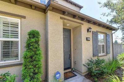 Roseville Single Family Home For Sale: 222 Chambord