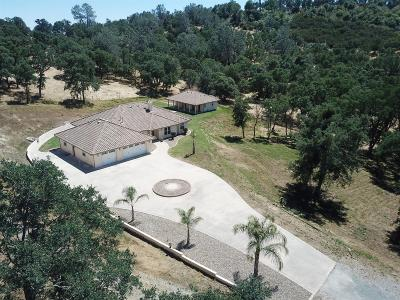 Valley Springs Single Family Home For Sale: 1733 Crown Court