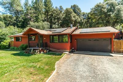Grass Valley Single Family Home For Sale: 18613 N Cherry Creek Road