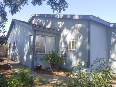 Sacramento Single Family Home For Sale: 5547 Tupelo Drive