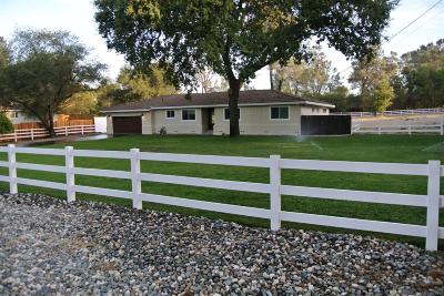 Placer County Single Family Home For Sale: 5937 Del Oro Road