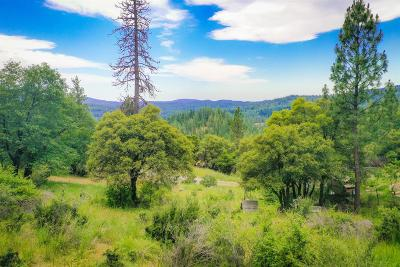 Nevada County Residential Lots & Land For Sale: 15893 Mountain View Drive