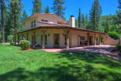 Placer County Single Family Home For Sale: 1755 Peaceful Valley Road
