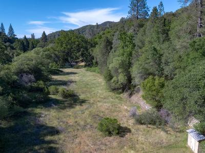 Sonora Residential Lots & Land For Sale: Skyview Drive