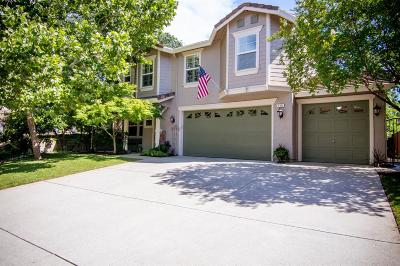 Placer County Single Family Home For Sale: 113 Glenwood Circle