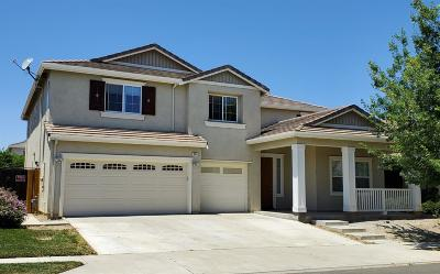 Patterson Single Family Home For Sale: 205 Daylily