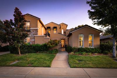 El Dorado Hills Single Family Home For Sale: 6125 Southerness Drive