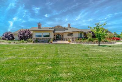 Yolo County Single Family Home For Sale: 11682 County Road 97