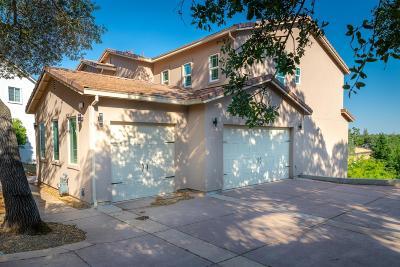 El Dorado County Single Family Home For Sale: 3307 Woedee Drive