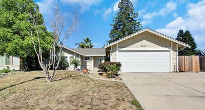 Folsom Single Family Home For Sale: 124 Winchester Court