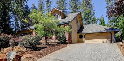 Grass Valley Single Family Home For Sale: 14663 Pammy Way